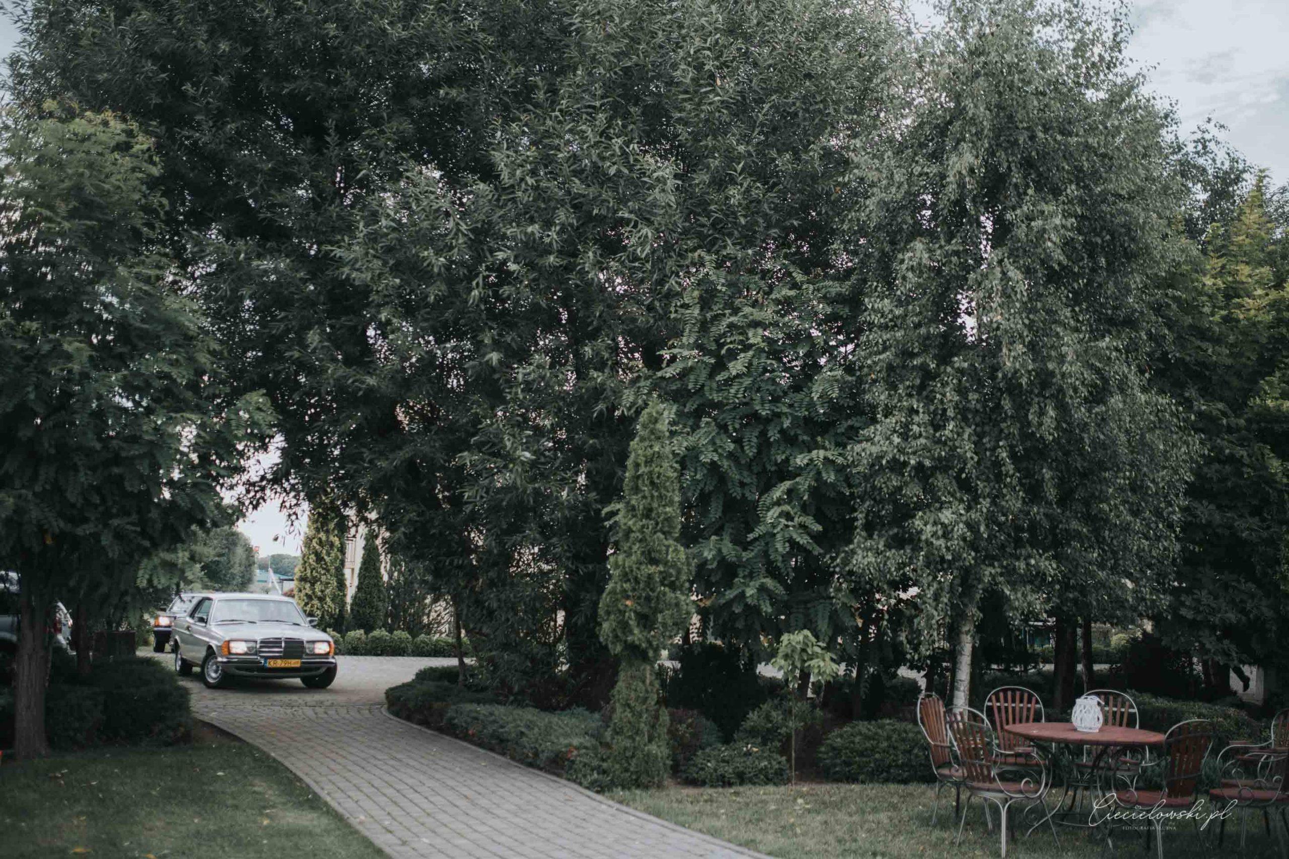 fotografia ślubna (47 of 85)