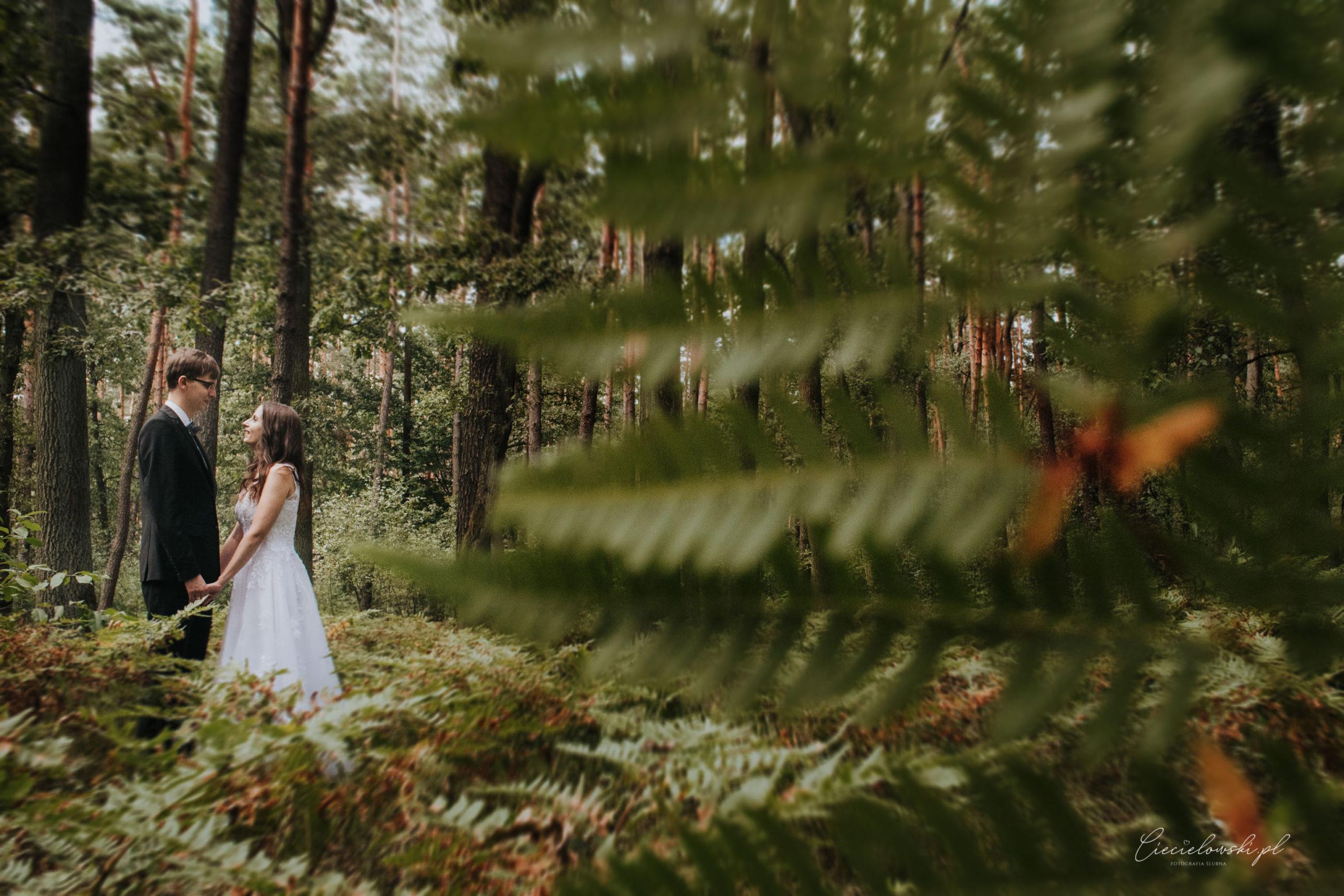 Iwona i Sylwek – sesja ślubna