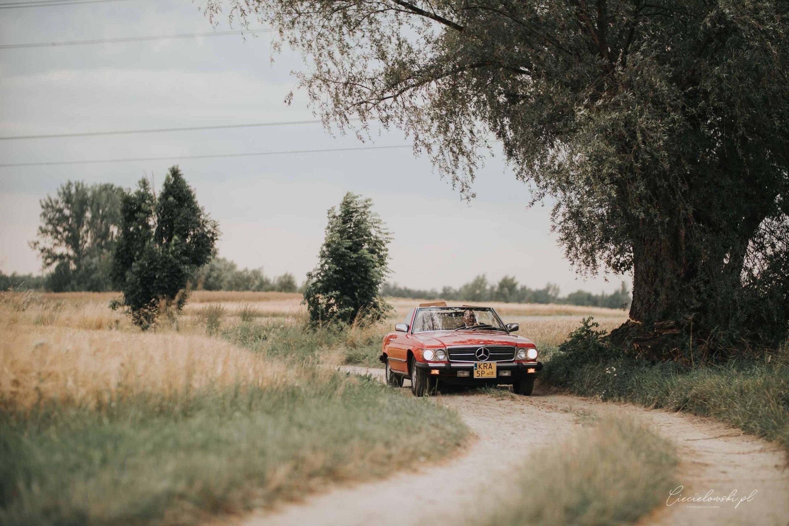 fotografia ślubna (58 of 66)